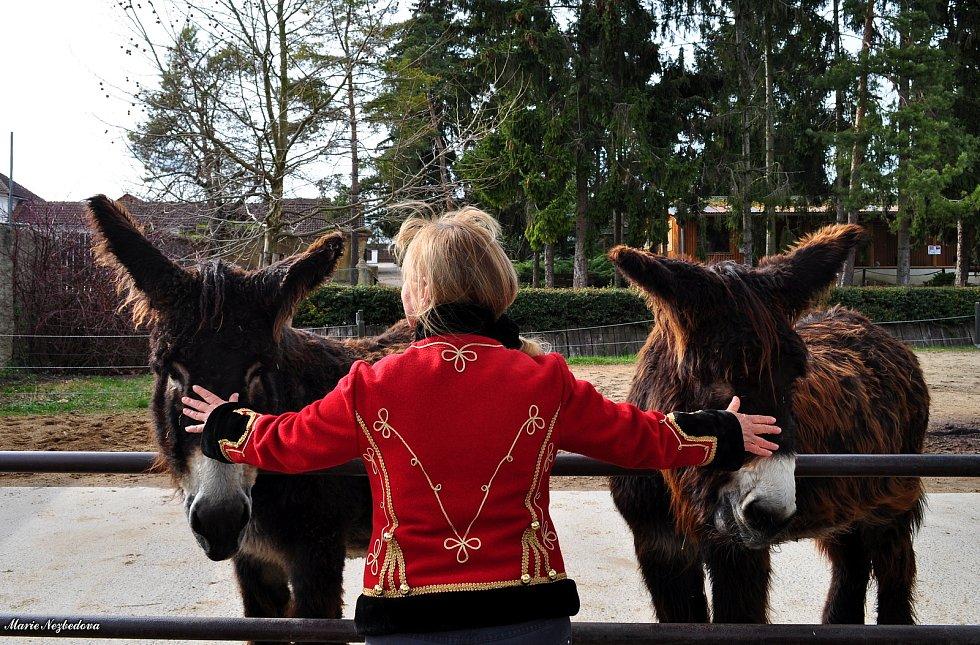 Zvířata z vyškovského ZooParku si užívají opětovnou pozornost návštěvníků.