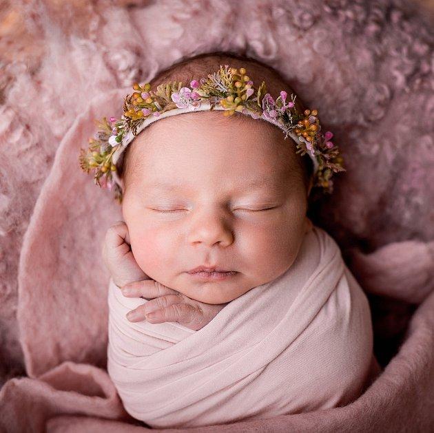 Fotografka Martina Spisarová nejraději fotí miminka stará maximálně čtrnáct dní.