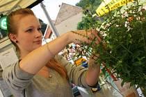 Na čtvrtém ročníku Olšanského pivobraní se točilo devětadvacet druhů piv.