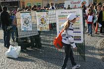 Masarykovo náměstí ve Vyškově obsadily na dopoledne desítky žáků vyškovských základních škol. Děti se učily třídit odpad.