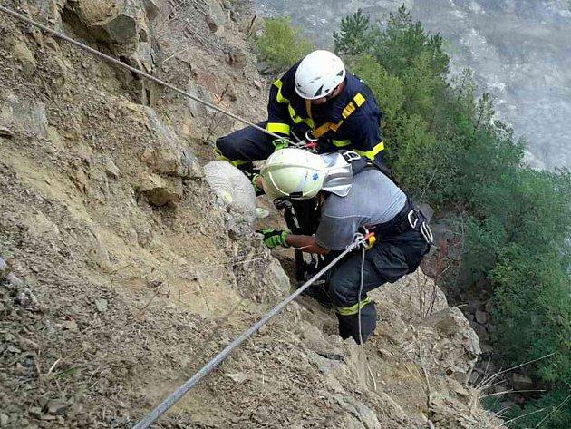 Hasiči zachraňovali uvíznutou ovci ve svahu kamenolomu nedaleko Lulče.