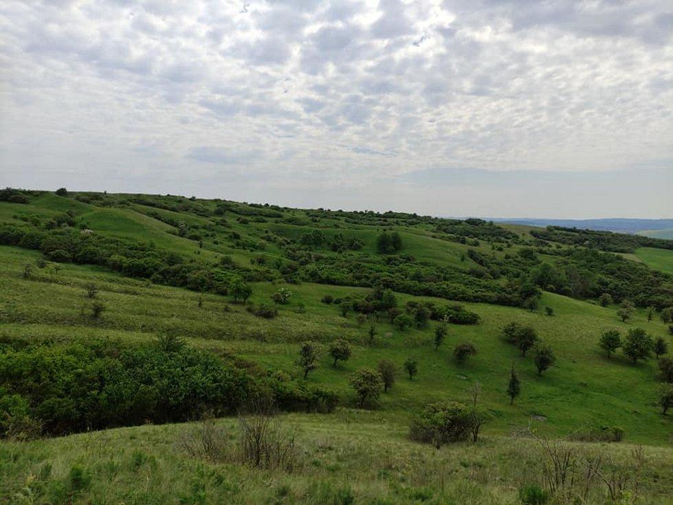 Výlet na Vyškovsko, kdy cílem byly Lysovice, Větrníky, Rostěnice a Bohdalice.