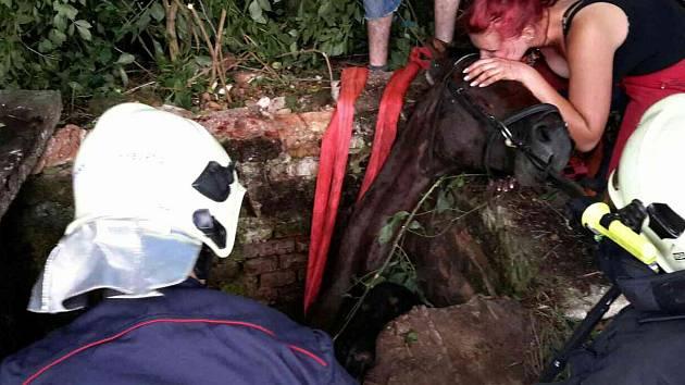 Kůň uvízl v jímce v bučovické místní části Kloboučky.