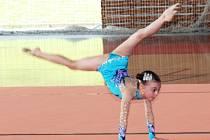Oddíl moderní gymnastiky SK Trasko Vyškov. Ilustrační foto.