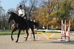 Přeskok je náročný pro jezdce i jejich koně.