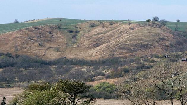 Přírodní rezervace Člupy u Maref je cenná díky přírodnímu bohatství i prastaré kulturní tradici.
