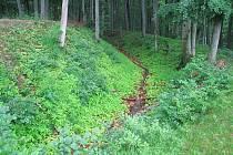 Pozůstatky Hrádku dodnes najdeme na vysokém kopci v lese nedaleko Snovídek.