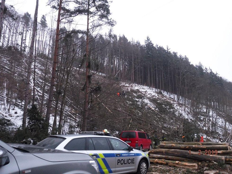 Tragicky skončila páteční práce dvou dělníků v hlubokých lesích v okolí Studnice na Vyškovsku. Klády je tam zavalily, jeden z nich nepřežil.