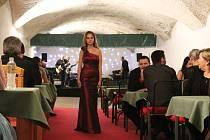 Komtesky, hraběnky i urození pánové dorazili do kasemat slavkovského zámku. Jednalo se o první ročník akce, která se konala na konci února 2016.