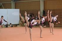 Gymnastky oddílu Trasko sklízely minulý ten úspěchy.
