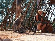 Čtyři klokani, asi tři stovky andulek a papoučci se mají zhruba do tří měsíců nastěhovat do nového pavilonu Austrálie ve vyškovském zooparku. Zázemí už stojí, brzy začne vznikat i venkovní část expozice.