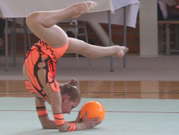 Na tradičním závodě O pohár města Vyškova se domácím gymnastkám dařilo, jak se patří.