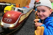 Původně mělo jít jen o sběratelskou výstavu. Nakonec si zájemci ve společenském sálu v Křenovicích vyzkoušeli ovládat i železniční modely. Za velkého zájmu viděli, jak to na dráze skutečně funguje.