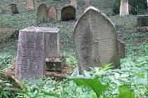 Židovský hřbitov ve Slavkově. Ilustrační fotografie.