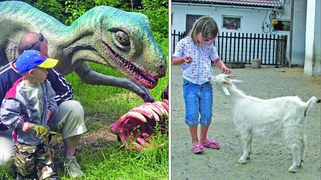 Dinopark a zoopark, to jsou největší turistická lákadla Vyškovska. Hodně je vyhledávají hlavně rodiny s menšími dětmi.