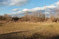 Na zasedání se rousínovští zastupitelé dohodli, že město podá žádost o dotaci na víceúčelový sportovní areál v lokalitě vedle bývalého zimního stadionu. Dotace může pokrýt až polovinu sedmimilionových nákladů. Sportovci to vítají.