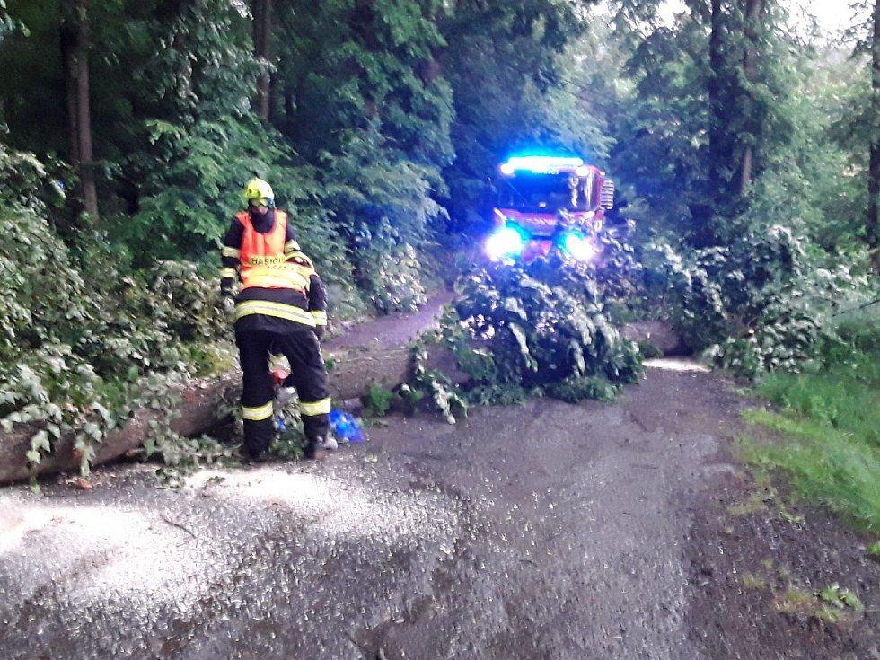 Na jižní Moravě odstraňují hasiči v sobotu večer především popadané stromy.
