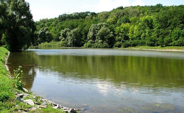 Rybník na rozloze necelých čtyř hektarů je po rozsáhlé rekonstrukci opět domovem vzácných obojživelníků.