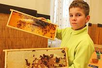 Včelařská výstava ve vyškovských Dědicích nabídla například zdobení medových perníčků, ukázku včelařských pomůcek, výrobu svíček z včelího vosku, vzdělávací panely i třeba dvě poutavé přednášky o životě včel. Zájem lidí byl velmi slušný.