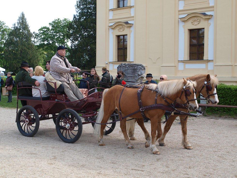 Největší přehlídka ohařů v České republice zaplnila v sobotu zámecký park ve Slavkově u Brna.