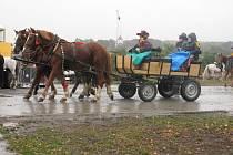I přes vytrvalý déšť vyjeli v sobotu dopoledne milovníci koní z Kobeřic u Brna a okolí na Hubertovu jízdu.