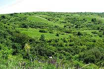 Nejstarší jihomoravská rezervace Větrníky postupně zaniká.
