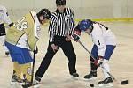 Ve druhém finálovém utkání hobbyextraligy hokejistů remizovali Havrani Šlapanice s Eso teamem Vyškov 2:2. První zápas vyhráli 4:2 a stali se vítězi hobbyextraligy.