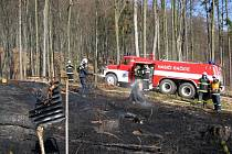 Půldruhého hektaru mladého lesního porostu zničil požár v Rakoveckém údolí u Račic-Pístovic.