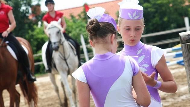 V Šafářském dvoře ve Vyškově pořádalo sdružení Piafa Den koní.