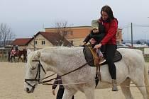 Šafářský dvůr ve Vyškově uspořádal pro děti Den otevřených dveří