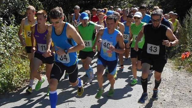 Letní běžecké závody v Nemojanech jsou známé náročným profilem. Nemojská pětka znamená dva a půl kilometru stoupání a poté stejně dlouhý seběh zpátky do cíle. Takovou zkoušku přijeli v sobotu složit závodníci nejen z blízkého okolí.