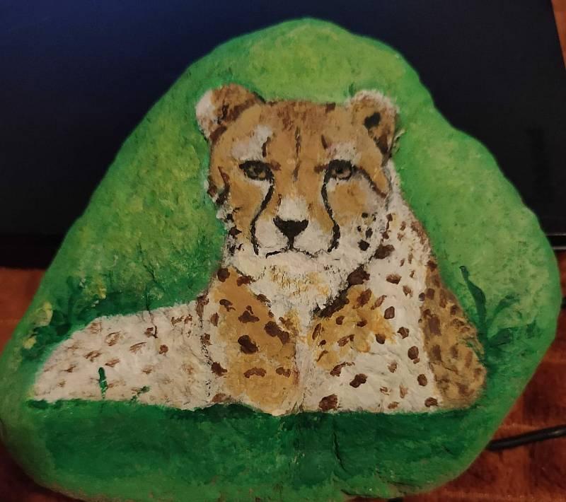 Peníze za vydražené kamínky jsou určeny na pomoc vybrané zoologické zahrady a posílají se přímo na její účet.
