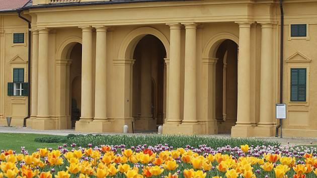 Park lednického zámku.