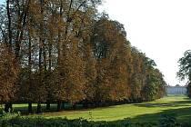 Podzimní nádech už chytají stromy ve slavkoském zámecké parku.