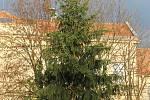 Děti z Mateřské školy Dědická vyrobily ozdoby na dědický vánoční strom.