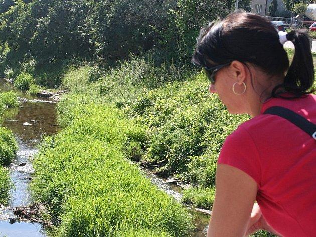 Koryto řeky Hané je ve Vyškově téměř ucpané usazeninami.