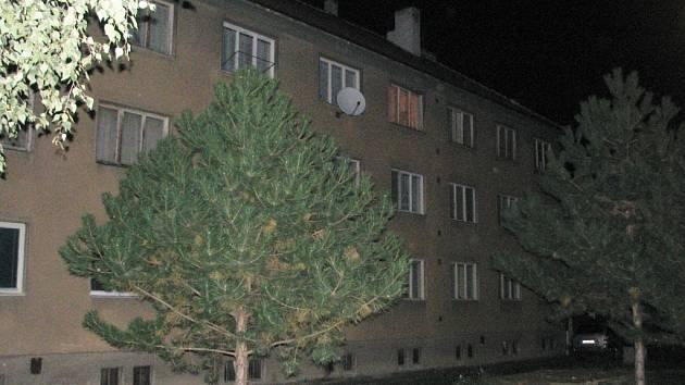 Jedna z bytovek ve slavkovské Nádražní ulici.