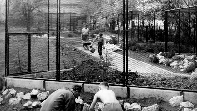 Vyškovský zoopark vznikl v roce 1965. V jedné z jeho částí byly umístěné voliéry pro zvířata, které už neodpovídají dnešním požadavkům. Příští rok je má nahradit pavilon Austrálie s klokany a andulkami.