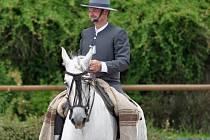Dny španělských koní v Nových Zámcích s ekonaly 12. června.