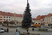 Vánoční strom na vyškovském Masarykově náměstí.