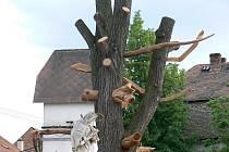 Plastika vytvořená z odumírajícího stromu v Rousínově.