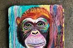 Zoologické zahrady zájemci podporují i dalšími způsoby jako peněžité dary, adopce nebo stravenkou pro zvíře.