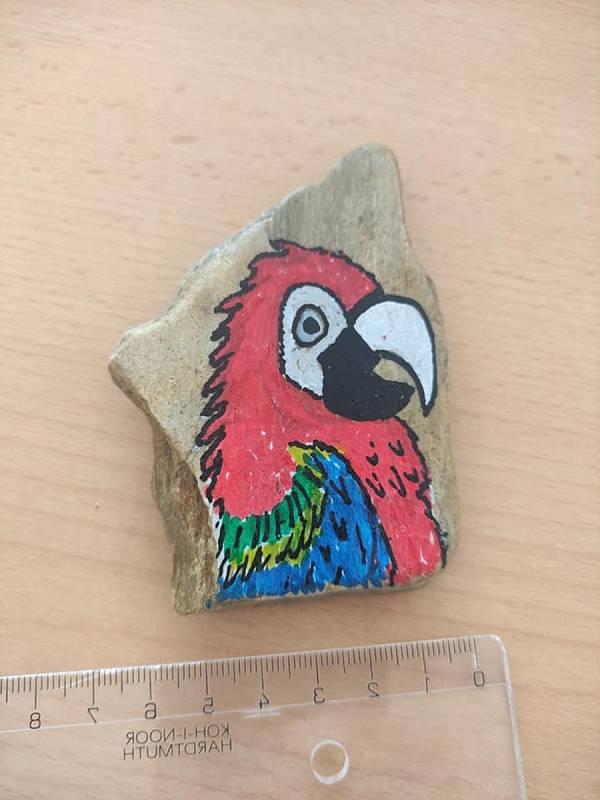 Obyčejné kameny mění účastníci aukcí na umělecká díla.