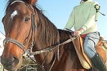 Monika Jánská miluje koně.