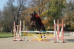 Ale Kovářová se se svým koněm dostala mezi nejlepší dvojici skokanské disciplíny.