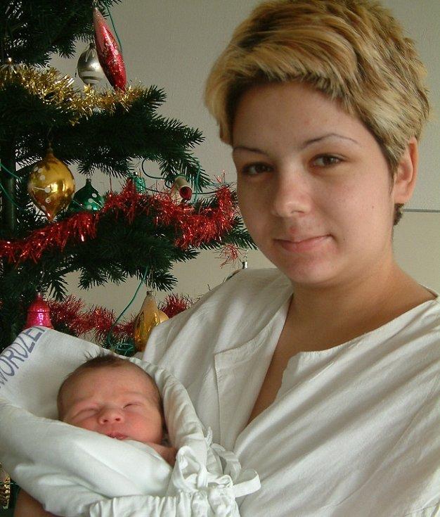 Jmenuji se Martina Maliňáková. Narodila jsem se 2. prosince ve vyškovské nemocnici. Vážila jsem 3,22 kg a měřila 50 cm.