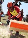 Představit práci dřevorubců je hlavním cílem pořadatelů Ruprechtovské pilky. Na letošním druhém ročníku změřilo síly dvaadvacet závodníků. Řezali, osekávali a skládali kmeny. Na programu bylo kromě jiného i kácení.
