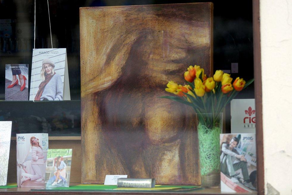 Karolína Zelená je nekonvenční vyškovská malířka. V době uzavřených galerií vystavila svá díla v několika výkladních skříních na vyškovském Masarykově náměstí. Podobně vystavují také autoři ve Slavkově u Brna.