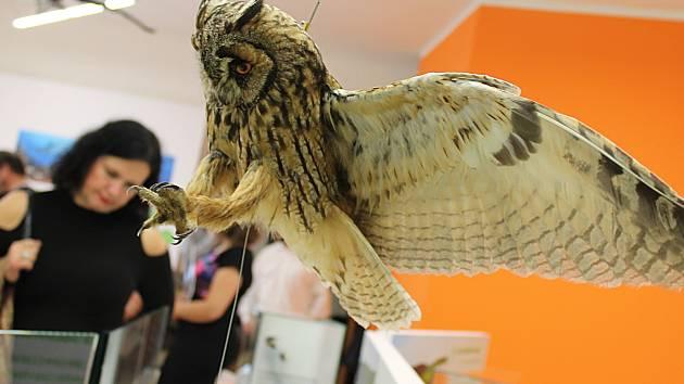 Muzeum v úterý slavnostně otevřelo zmodernizovanou expozici Příroda Vyškovska.