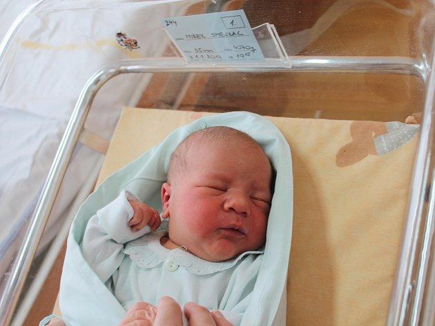 Prvním miminkem roku 2017narozeným ve vyškovské nemocnici se stal Mirek Smejkal. Měřil 55centimetrů a vážil 4070gramů.